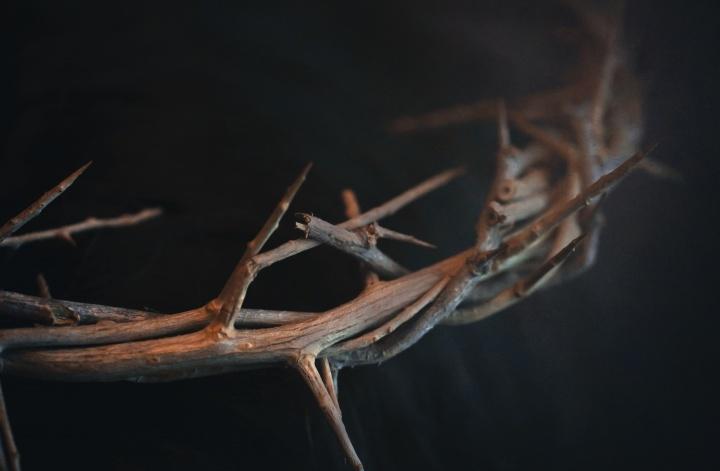 Coroa de espinhos.