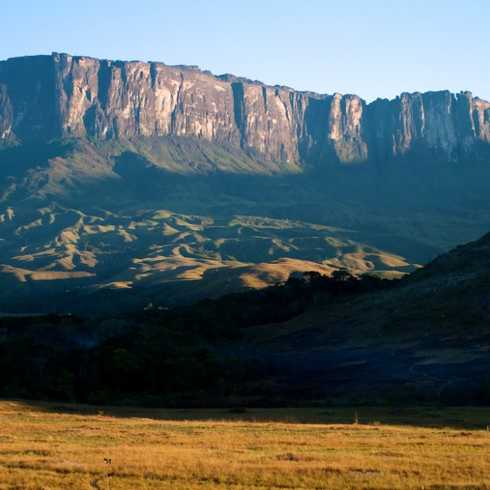 Mt Roraima